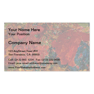 Filipp Malyavin- Whirlwind Business Card