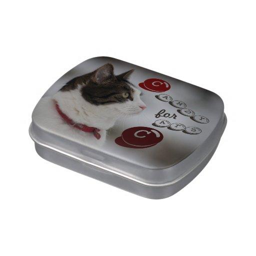 Fill with Cat Treats CC0383 Candy Tin