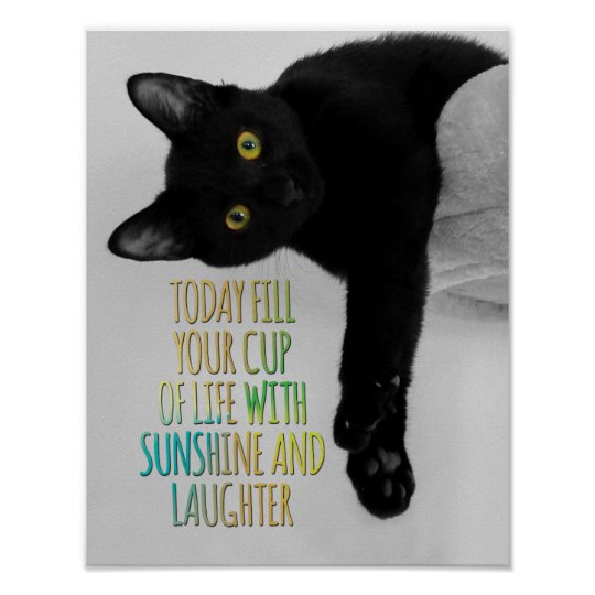 Fill Your Cup Of Life Black Cat Motivational Quote Poster