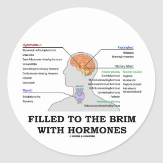 Filled To The Brim With Hormones (Anatomy) Classic Round Sticker