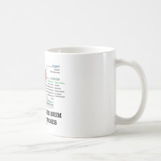 Filled To The Brim With Hormones (Anatomy) Classic White Coffee Mug