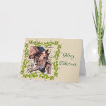 Filly and Foal Christmas Card