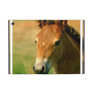 Filly Cover For iPad Mini