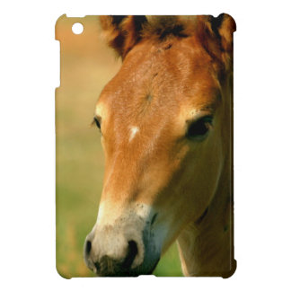 Filly Cover For The iPad Mini