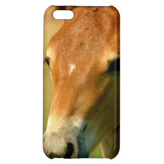 Filly Cover For iPhone 5C