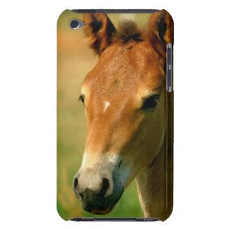Filly  iTouch Case Barely There iPod Cases