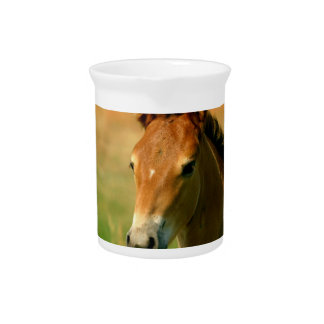 Filly Pitcher