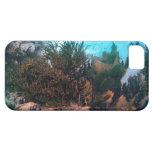 Filón de Bonairean iPhone 5 Carcasa