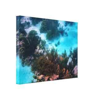 Filón de Bonairean Lona Envuelta Para Galerias