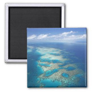 Filón de la lengua, parque marino de la gran barre imán cuadrado