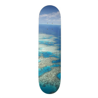 Filón de la lengua, parque marino de la gran barre tabla de skate