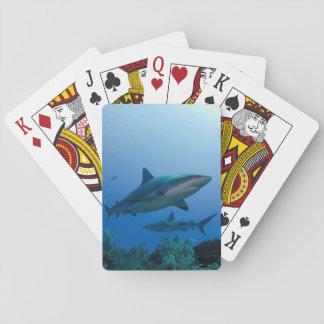 Filón del Caribe Shark Jardines de la Reina Baraja De Póquer