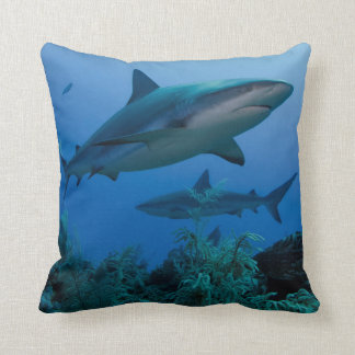 Filón del Caribe Shark Jardines de la Reina Cojín