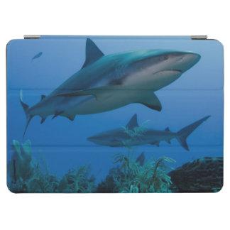 Filón del Caribe Shark Jardines de la Reina Cubierta De iPad Air