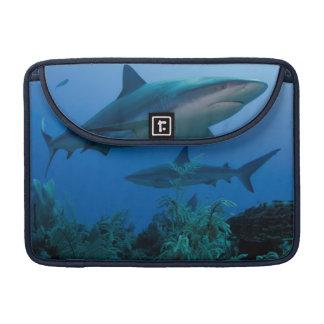 Filón del Caribe Shark Jardines de la Reina Funda Para Macbooks
