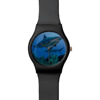 Filón del Caribe Shark Jardines de la Reina Reloj De Mano