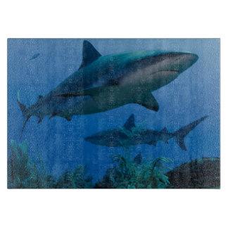 Filón del Caribe Shark Jardines de la Reina Tablas De Cortar