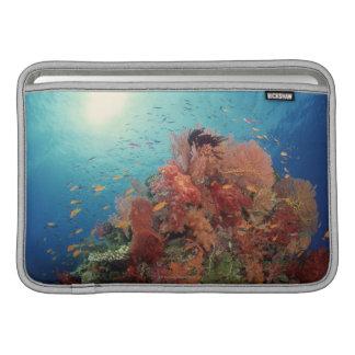 Filón escénico de los corales duros, corales suave funda macbook air