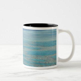 Filón tropical, la gran barrera de coral, taza de dos tonos