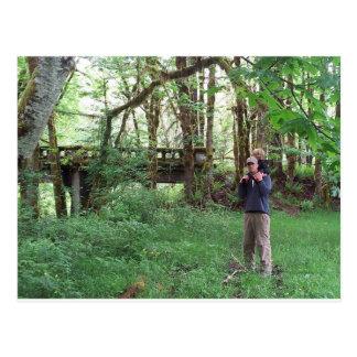 Filón y papá en el puente cubierto de musgo tarjeta postal