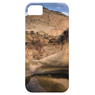 FILONES CAPITALES FUNDA PARA iPhone 5 BARELY THERE