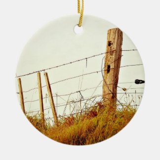 Filter Themed, Prickly Filtered Fence Over Sunburn Double-Sided Ceramic Round Christmas Ornament