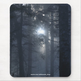 Filtered Sunlight in Forest Nature Series Mouse Pad