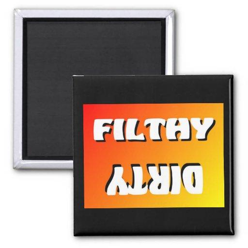 FILTHY/DIRTY BACHELOR'S DISHWASHER MAGNET