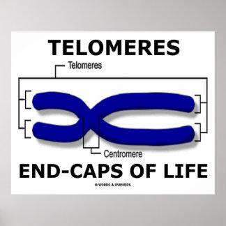 Fin-Casquillos de Telomeres de la vida (humor de Posters