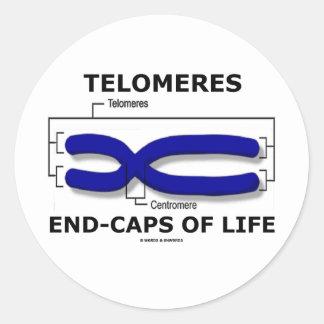 Fin-Casquillos de Telomeres de la vida (humor de Pegatina Redonda