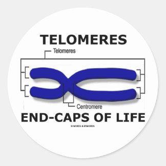 Fin-Casquillos de Telomeres de la vida (humor de Pegatinas Redondas