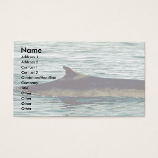 Fin whale business card