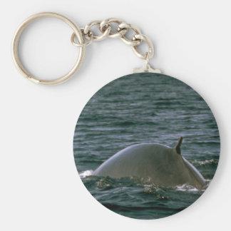 Fin whale key chains