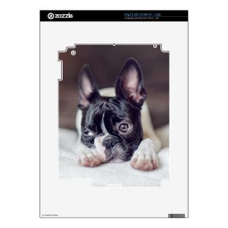 Fina la Boston Terrier Skins Para iPad 2