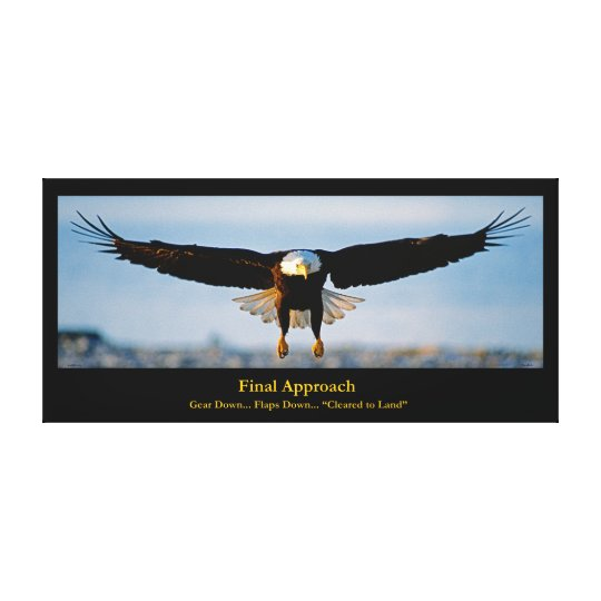 Final Approach Bald Eagle Wrapped Canvas