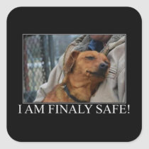 Finally Safe Animal Rescue Stickers