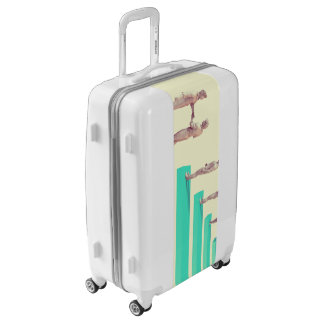 Financial Services or Fintech Company as Concept Luggage