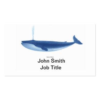 Finback Whale no 4 Marine Mammal Nautical Decor Business Card Templates