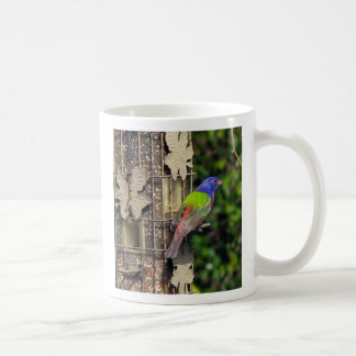 finch-1-feb5-06, The Painted Bunting Photo by D... Classic White Coffee Mug