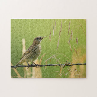Finch eating seeds of a wild grass jigsaw puzzle