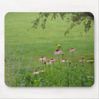 Finch on Coneflower Mouse Pad