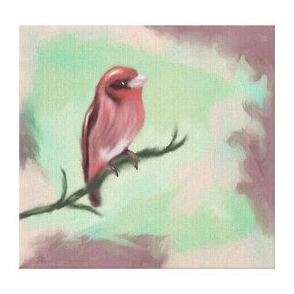 Finch Rose Canvas Print