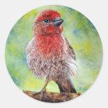 Finch Stickers