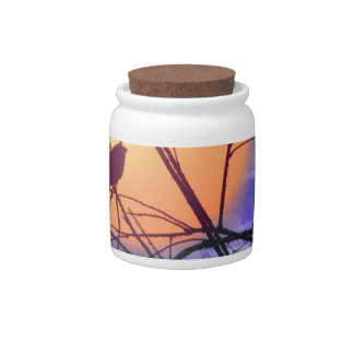 Finch Sunset Candy Jars
