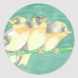 Finches Round Stickers