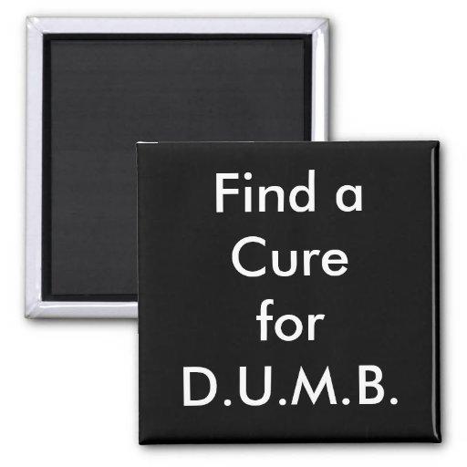 Find a Cure for D.U.M.B. Fridge Magnets