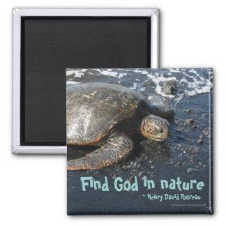 Find God in Nature Sea Turtle Magnet