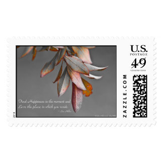 Find Happiness in the moment... USPS Stamps