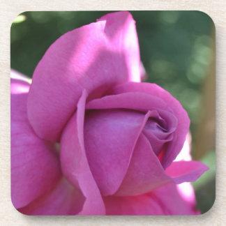 Find Joy Rose Coaster Set