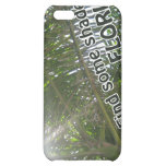 Find Shade in Florida iPhone Case Case For iPhone 5C
